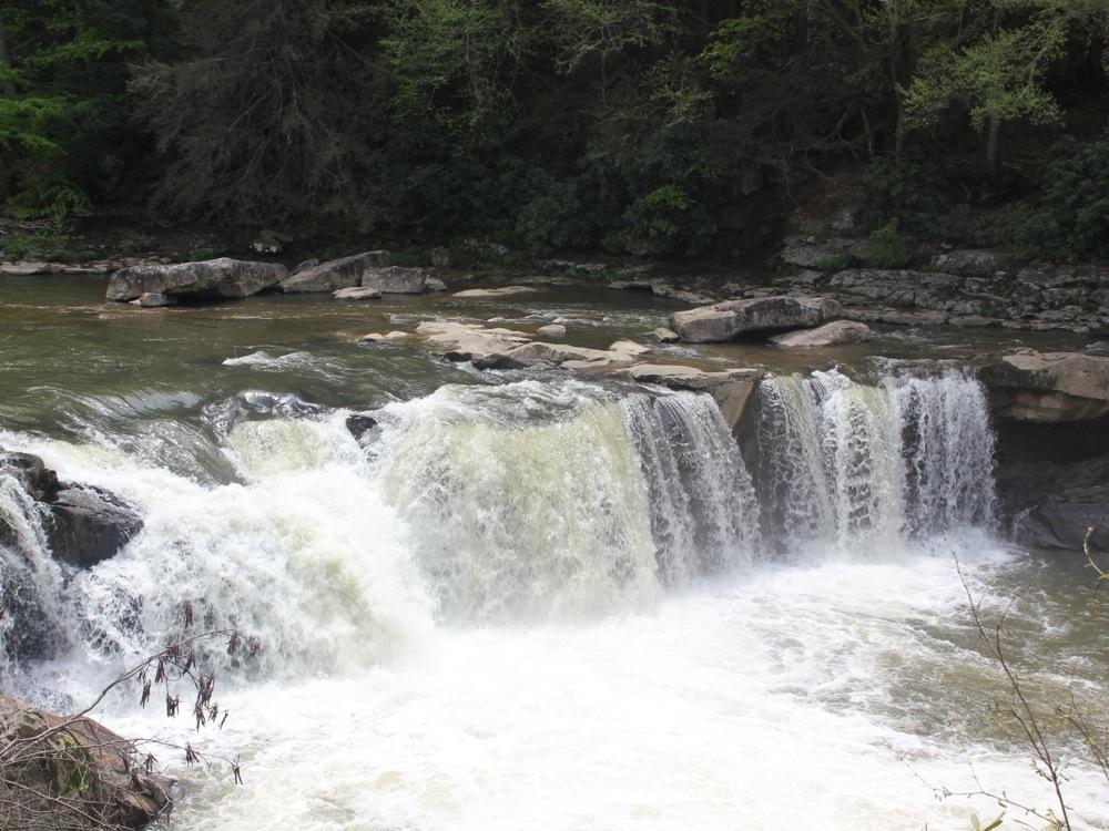 Wonder Falls